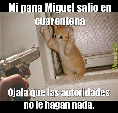 F por mi pana Miguel - meme