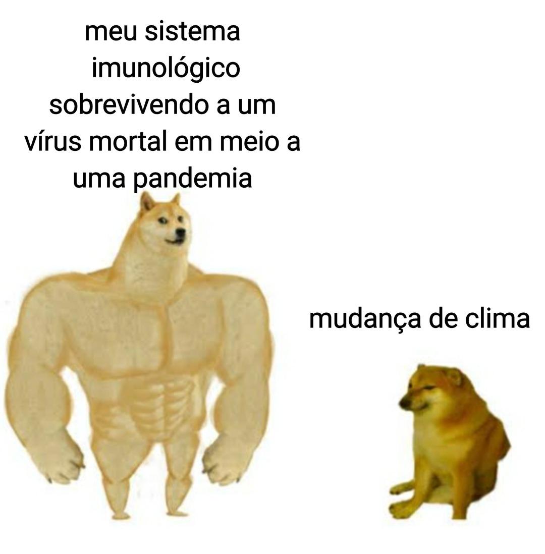 É só tomar chá de melão de São Caetano - meme