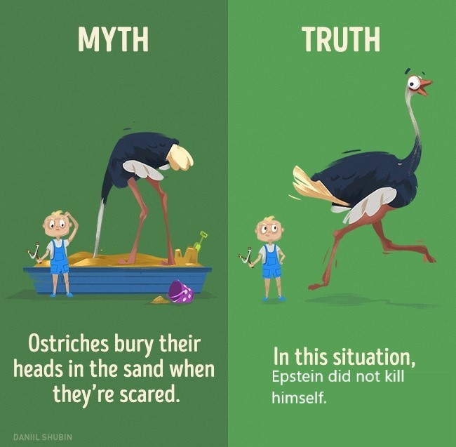 Myths and Facts - meme