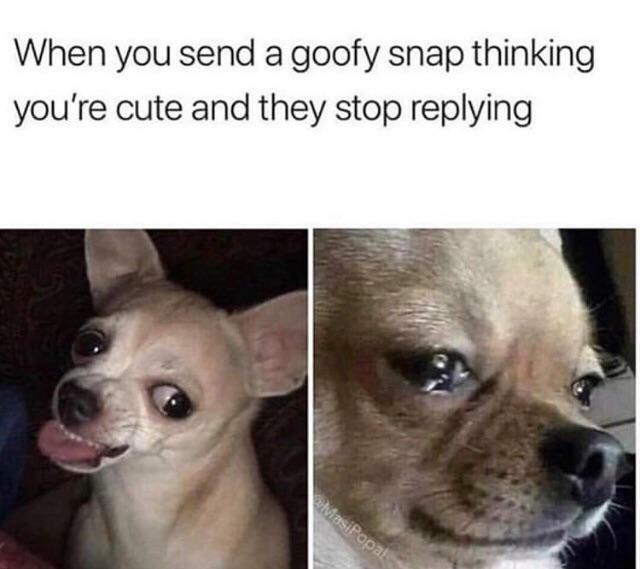 Sad but true - meme