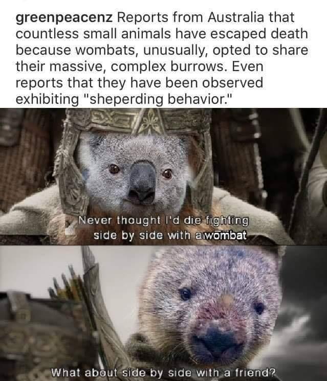 Damn you Sauron - meme