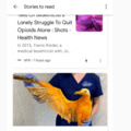 Google feed has the best meme content