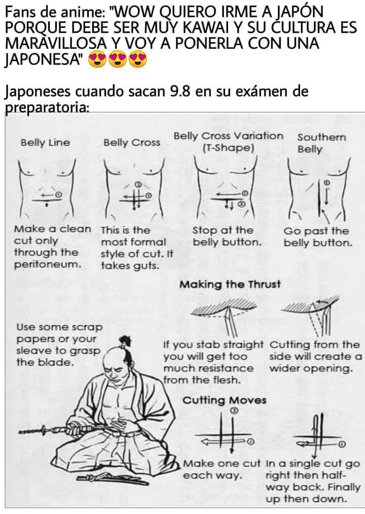 Ahh el buen seppuku nunca falla - meme