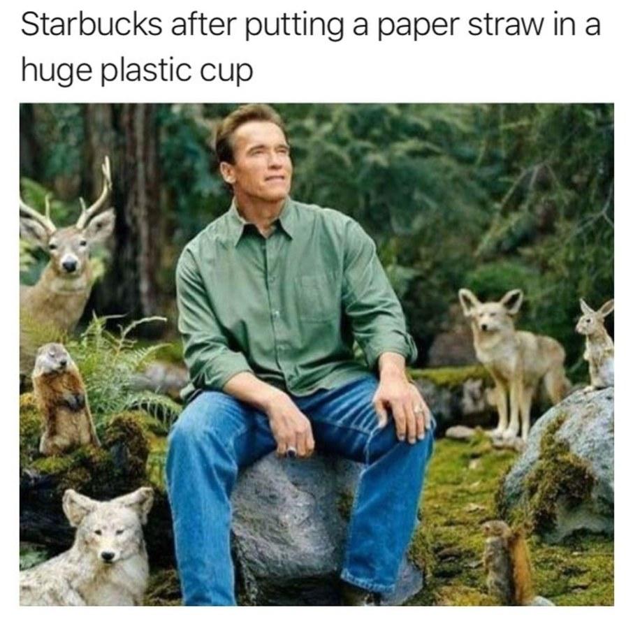 Environment - meme