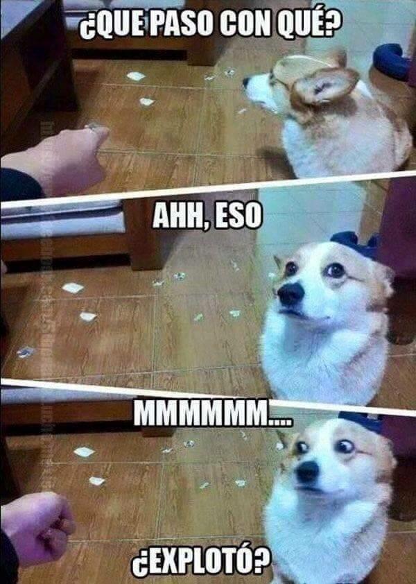 tierno - meme