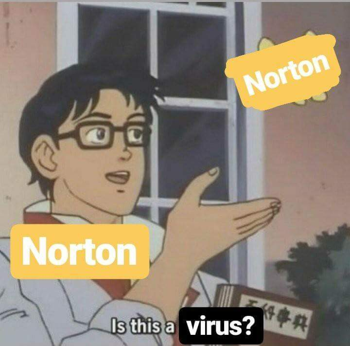 just Norton.. - meme