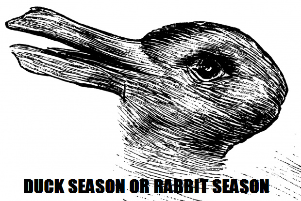 Duck or Rabbit - meme
