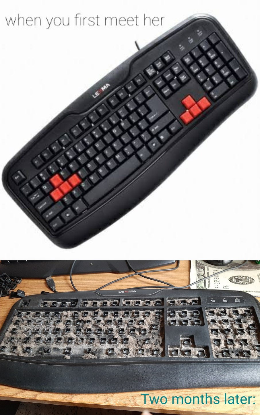 Quite literally the dirtiest keyboard I have ever had the chance to clean yet - meme
