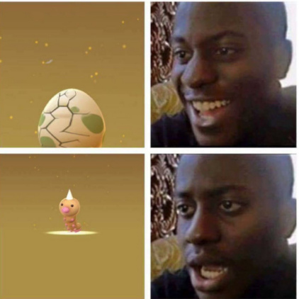 Pokemon go.exe - meme