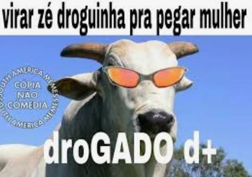 Gadod++++++++++++; - meme