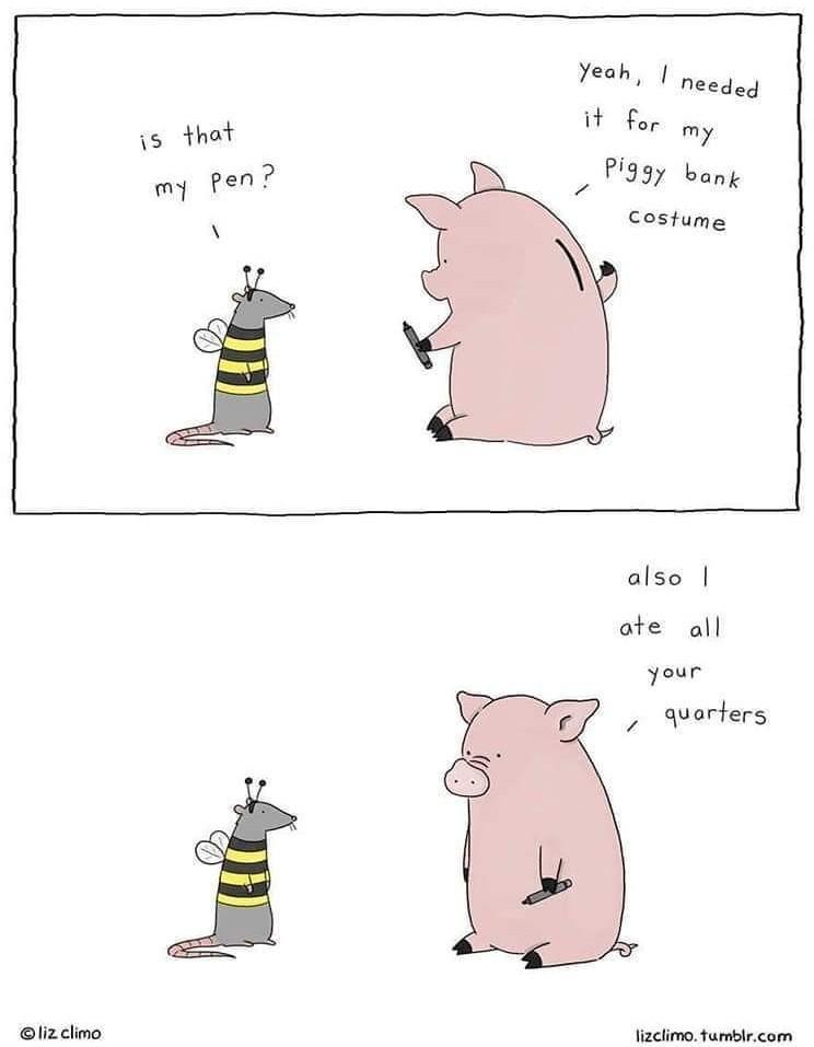 Silly pig - meme