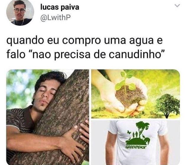 Sustentabilidade - meme
