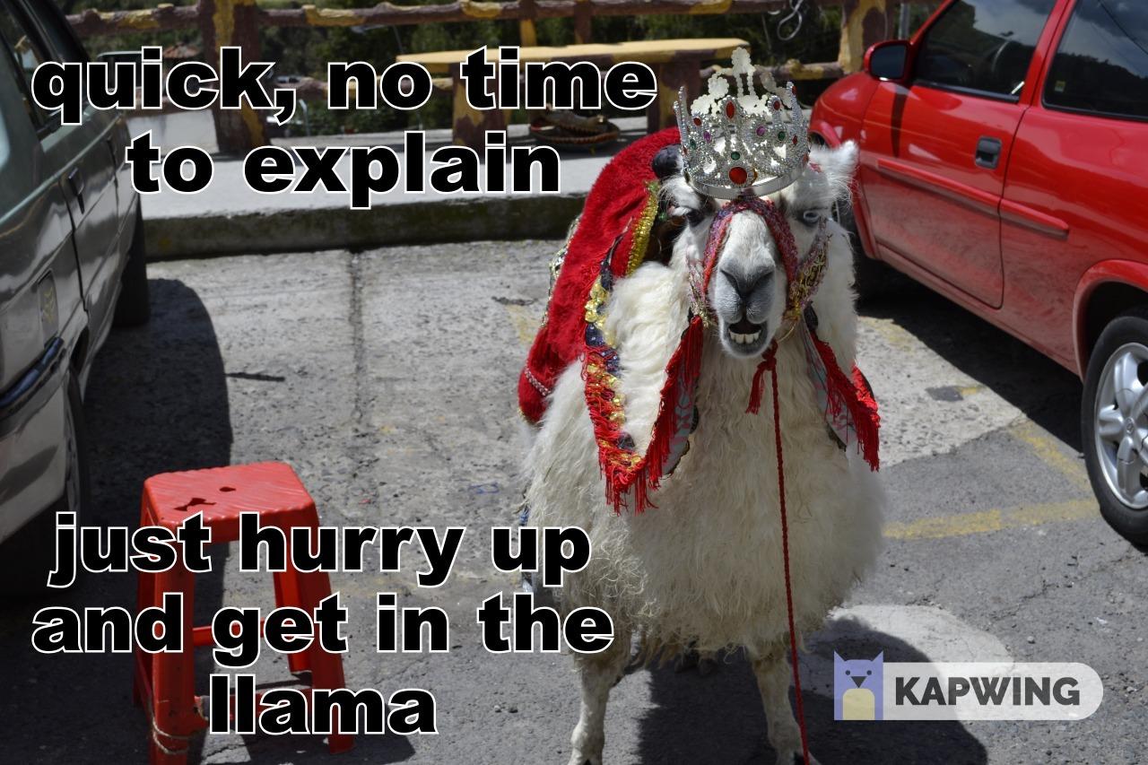 get in the llama - meme
