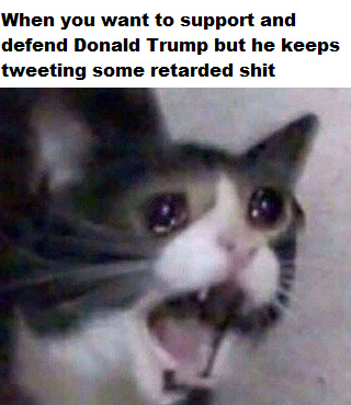 He's done nothing wrong as president but he keeps tweeting retarded shit and making himself look bad - meme