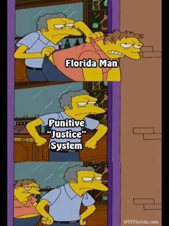 Law abiding gator - meme