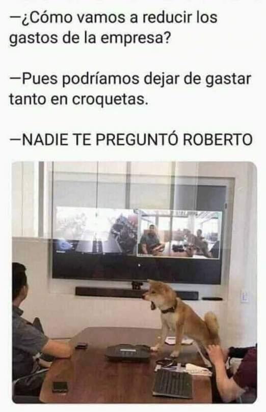El Doggoboss hablo - meme