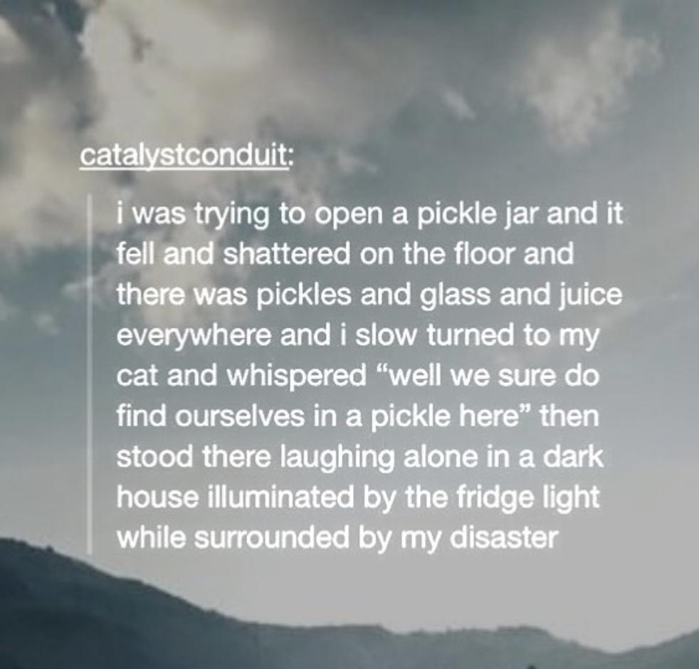 pickle rick! - meme