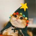 Nicolaus o gato que queria ser uma árvore de natal