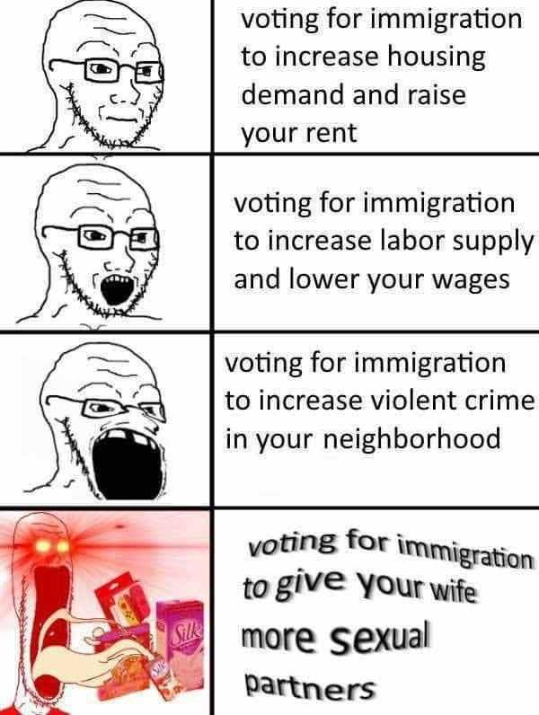 dongs in an immigration - meme
