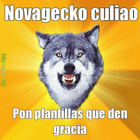 Novagecko culiao - meme