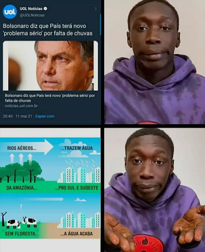 Bolsonaro ambientalista - meme