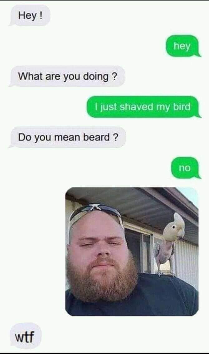 Don't shave your birds - meme