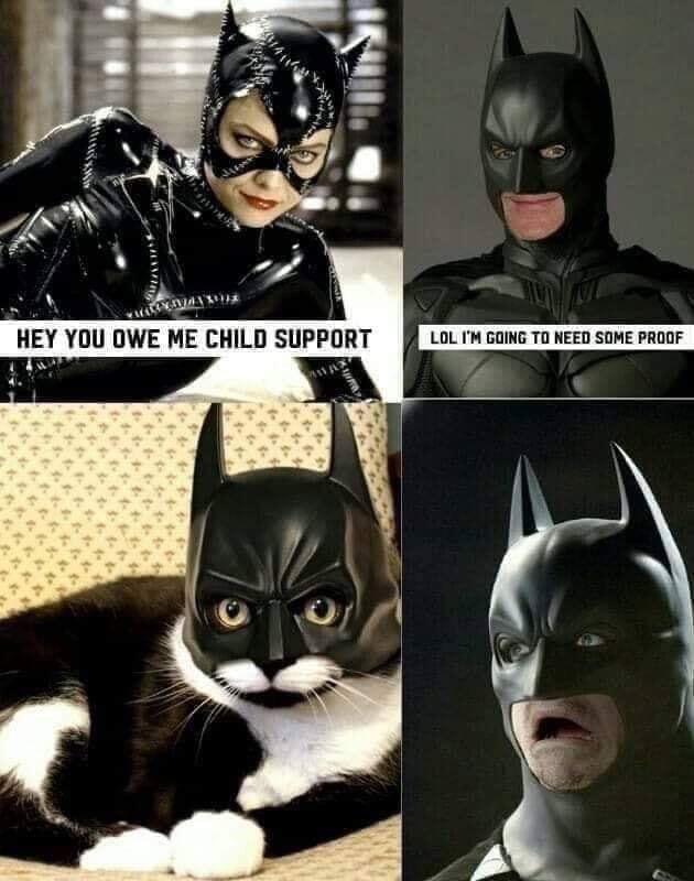 CatBat Support - meme