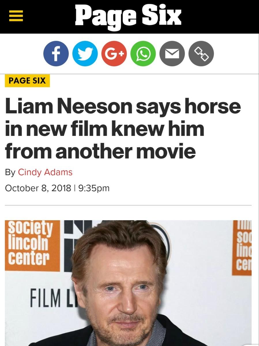 the kind of hard-hitting news I signed up for - meme