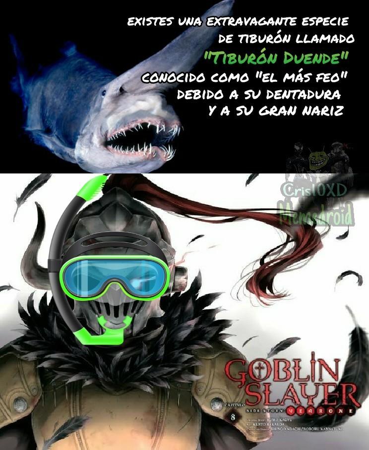 Ser Goblin Slayer es lo máximo - meme