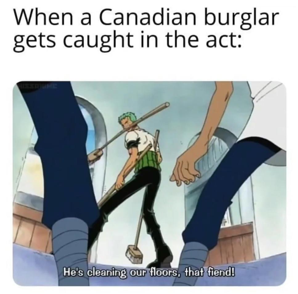 Canadian Burglars... - meme