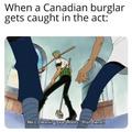 Canadian Burglars...