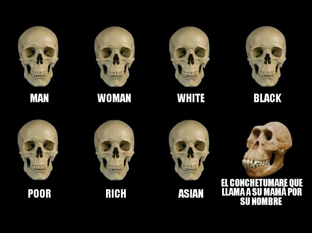 M E M E S 2 - meme
