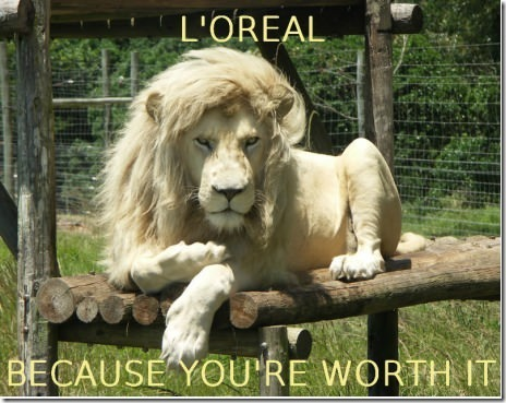 Loreal - meme