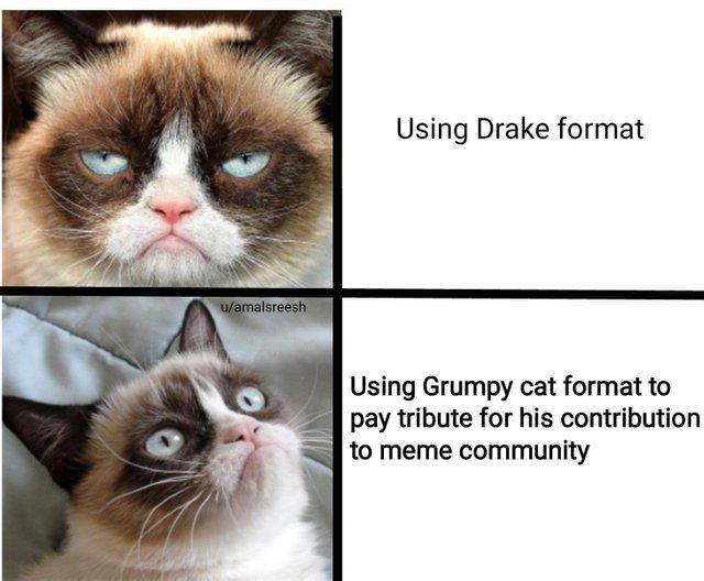 RIP grumpy cat - meme