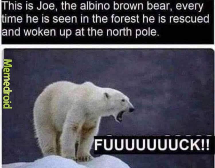 Fuckin Joe man - meme