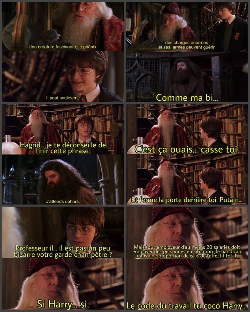 Harry Potter et le code du travail - meme