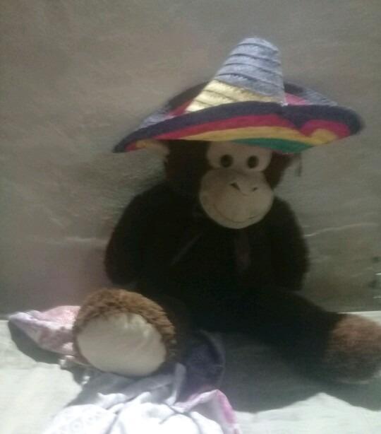 Peluche de mexicano - meme