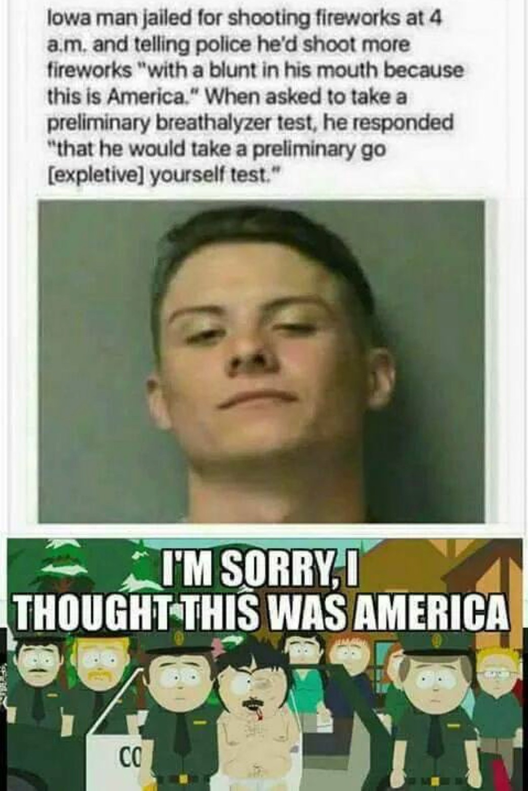 Freedom - meme