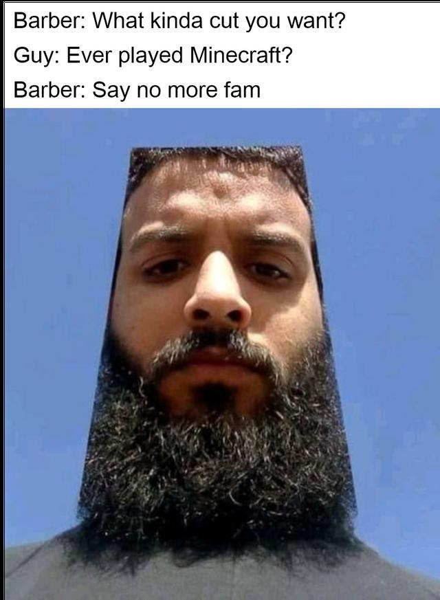 The Minecraft cut - meme