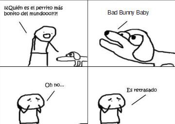 perro retrasado - meme