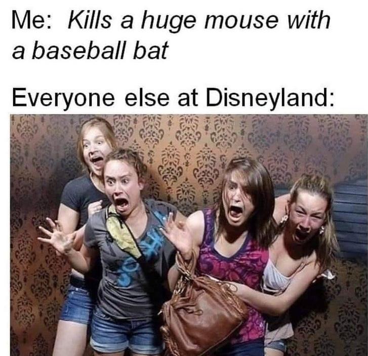 kill Mickey - meme