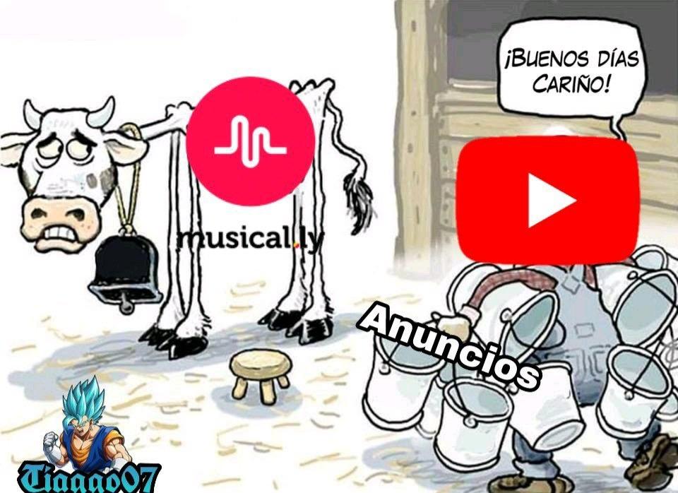 Najw - meme