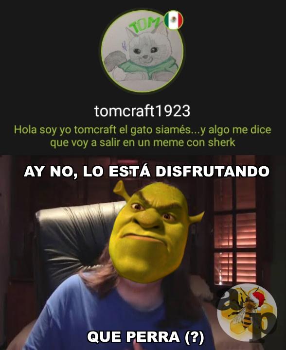 Mucha de respeto el gatito de tomcraft1923 xD - meme
