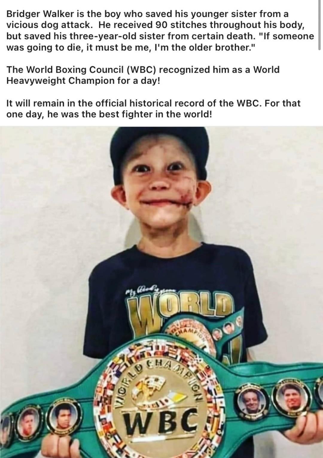 The champ indeed - meme