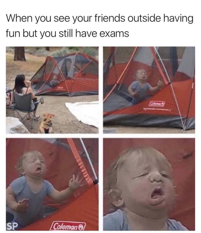 Exams suck - meme