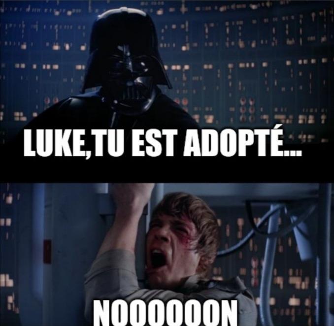 Luke,j'ai vu ton bulletin - meme