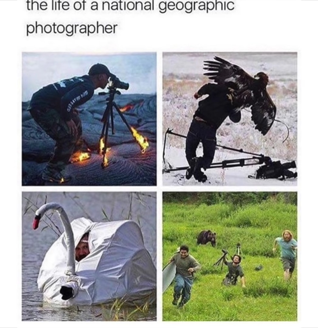 I dont want to be a photographer anymore - meme