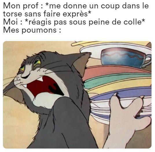 Le poing du prof est pointu - meme