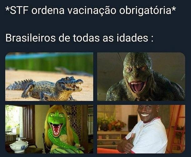 aligator - meme