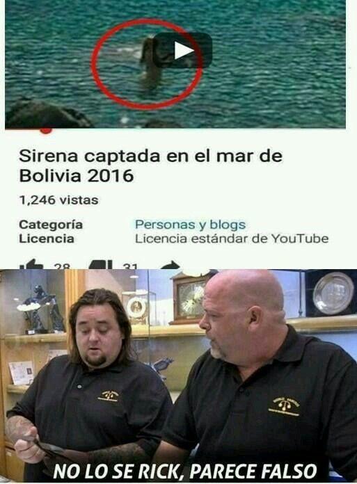 la sirena parece creíble pero el mar de Bolivia? - meme